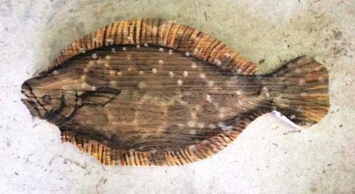 Name:  _wsb_498x236_flounder-on-cedar.jpg Views: 946 Size:  53.7 KB