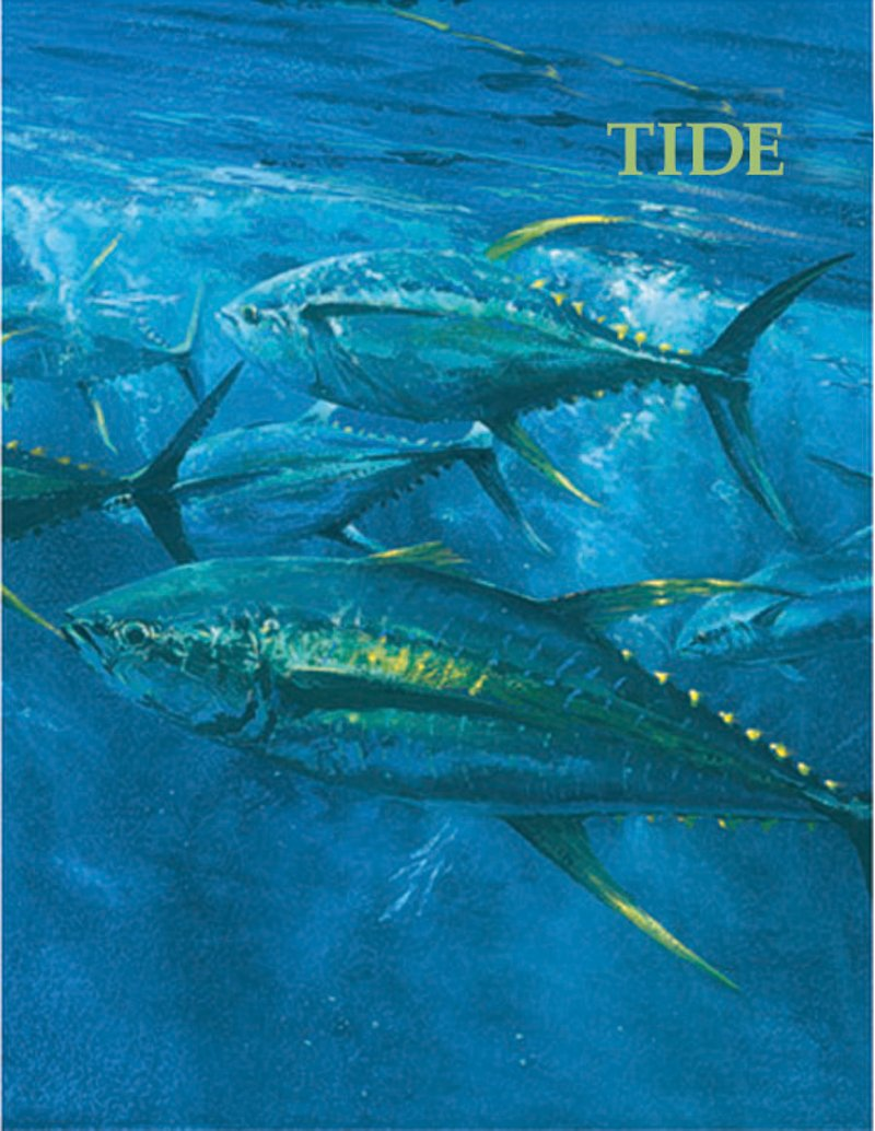 Name:  TIDE MAGAZINE.jpg